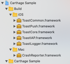 import_carthage_frameworks_complete