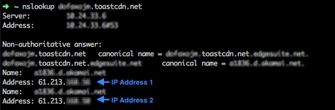 nslookup-IP확인